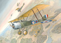 Sopwith Strutter two-seat - Image 1