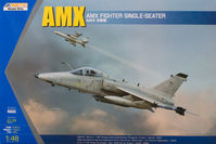 AMX Single Seat Fighter